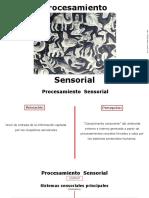 Procesamiento_Sensorial-4.pdf