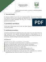 1.1 - HARINAS (1).docx