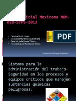 Norma Oficial Mexicana Nom 028 Stps 2012