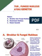 44322 Nukleus Materi Genetik 1b