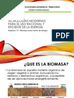 3.1 biomasa