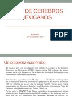 Fuga de Cerebros Mexicanos