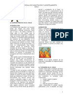 Manual 1081 Ifsta