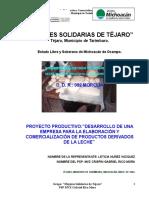 Desarrollo de una empresa para la elaboracion y comercializa.doc