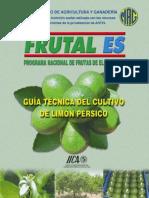 Cultivo Del Limon