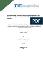 a0285e tesis.pdf