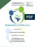 Informe Diagnostico Sg-sst Final