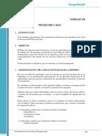 7 El flujo de Caja (CyP).pdf