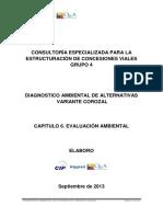 Capitulo 6. Evaluacion Ambiental VARIANTE COROZAL