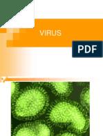 Los Virus