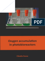 Oxygen Accumulation in Photobioreactors