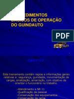 Guindauto Proc.basicos