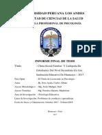 Informe Final 0019a