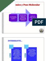Peso Molecular.pdf