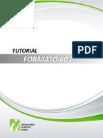 Formato607