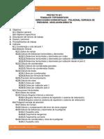 Proyecto 1 Sumario Informativo.docx