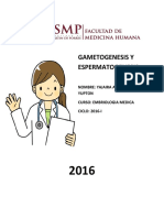 Gametogenesis y Espermatogenesis