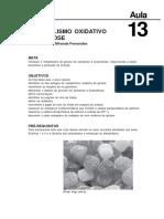 11284816022012bioquimica_aula_13 (1)