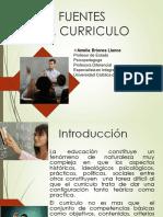 Fuentes y Fundamentos del curriculum.pdf