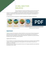 LA CADENA DEL SECTOR HIDROCARBUROS.docx