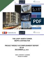 Project Report Status Format Sample