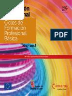 FP - FPB - 2017-06 Basico.pdf