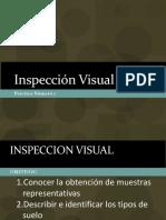 1 Inspeccion Visual.pdf