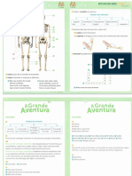 A Grande Aventura - Fichas de Estudo do meio.pdf