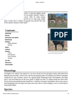 Antelope - Wikipedia