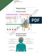 watermark biopsychology
