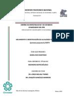 Aislamiento e Identificacion de Alcaloides Tipo Tropano en Ipomoea Purpurea (L) Roth (1)