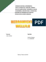 Asignación WELLFLO..docx