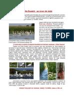Delta Dunării Rares Florin