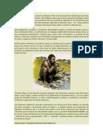 Clase de Historia El Hombre Primitivo en el Perú y Evaluación en Clase.docx