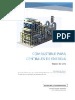 Combustible Para Centrales de Producción de Energía