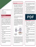 PIEDRAS DE ESMERIL.pdf