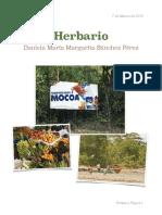 Herbario PDF