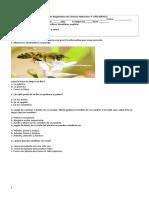 4° diagnóstico C. naturales