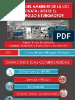 Impacto Del Ambiente en El Desarrollo Neuromotor Del RN