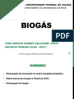 Biogás