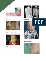 20 Enfermedades (2).docx