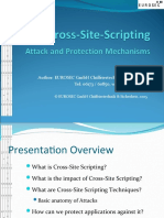 Cross Site Scripting Overview
