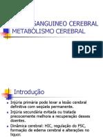 Aula Metabolismo Cerebral
