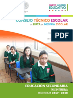 consejo técnico 2017-208.pdf