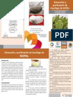 Extracción y purificación del extracto del cactus.pdf