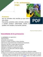 Presentación de Zoologia 1