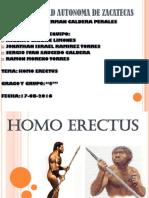 presentacion homoerectus