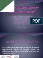 27486348-fISIOLOGIA-CIRCULACION-PULMONAR.pptx