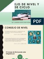 Consejo de Nivel y de Ciclo
