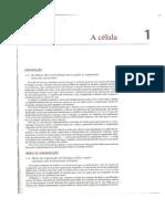 Capitulo.1.A.Celula